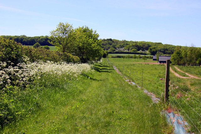 Green belt land, country lane, selling your land with Land Market